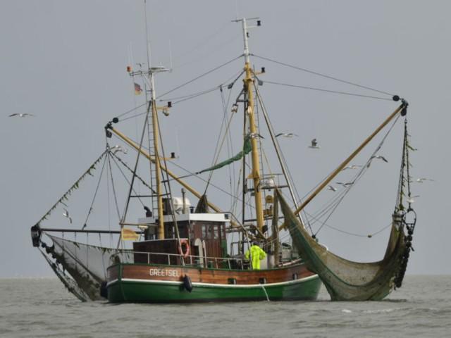 Norderney Fischkutter