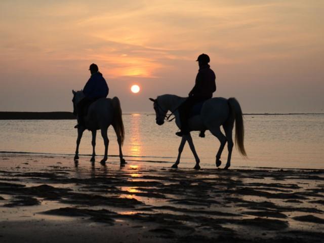 Reiter am Strand von Norderney