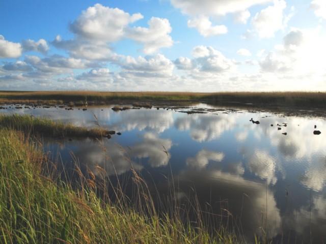 Norderney's Osten