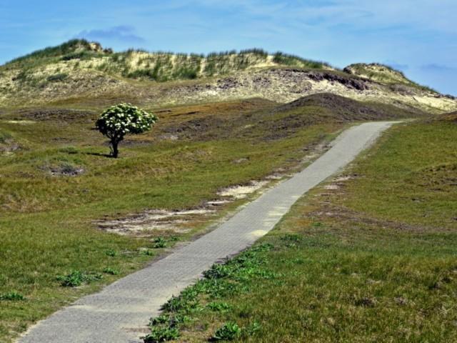 Wanderweg Norderney